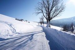 Straat in de winter Royalty-vrije Stock Afbeelding