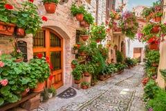 Straat in kleine stad in Italië in de zomer royalty-vrije stock afbeeldingen