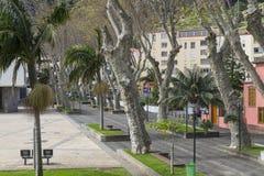 Straat in Machico op Madera Stock Foto