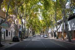 Straat in Mendoza van de binnenstad - Mendoza, Argentinië stock afbeelding