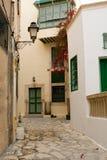 Straat met houten deuren en struik met bloemen in Mahdia Stock Foto's