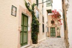 Straat met houten deuren en struik met bloemen in Mahdia Royalty-vrije Stock Foto's