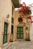 Straat met houten deuren en struik met bloemen in Mahdia Royalty-vrije Stock Afbeeldingen