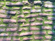 Straat met mosachtergrond Royalty-vrije Stock Afbeelding