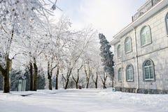 Straat met sneeuw Stock Afbeelding