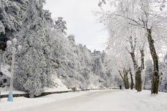 Straat met snow_1 royalty-vrije stock afbeeldingen