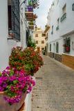 Straat met typische kleuren van Almuñecar stock fotografie