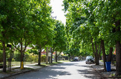 Straat in Talca Royalty-vrije Stock Afbeeldingen