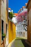 Straat van de lente de typische Lissabon, Portugal royalty-vrije stock foto's