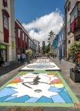 Straat van La laguna met bloemtapijten Royalty-vrije Stock Fotografie