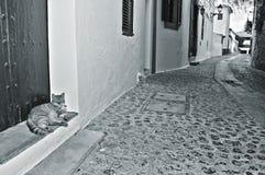 Straat van oude stad van Ibiza Stad, de Balearen, Spanje Stock Afbeelding