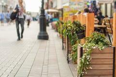 Straatbloemen op de Europese straat Stock Foto