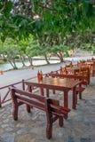 Straatkoffie onder bomen Stock Fotografie