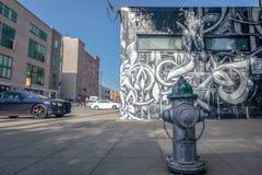 Straatkunst in Sacramento, Californië stock afbeelding