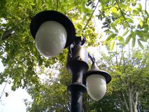 Straatlantaarn in een park stock fotografie