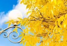 Straatlantaarn en gele bladeren tegen de blauwe hemel Royalty-vrije Stock Fotografie