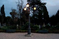 Straatlantaarn in het 's nachts park Stock Afbeelding