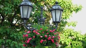 Straatlantaarn met bloemen wordt verfraaid die Stock Fotografie