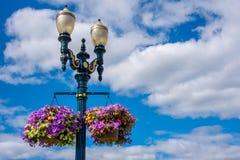 Straatlantaarn met een bloemmand Royalty-vrije Stock Foto's