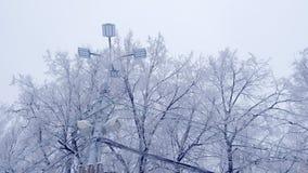 Straatlantaarnlamp en machtslijn op de achtergrond van sneeuwbomen in de winter stock videobeelden