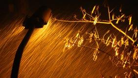 Straatlantaarns in de blizzard Stock Afbeelding