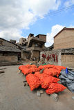 Straatmening in de stad China van Tianlong Tunbao Royalty-vrije Stock Afbeelding