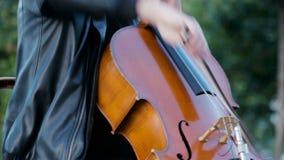 Straatmusici die in het park in een grote stad spelen stock footage