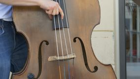 Straatmusicus Bass Player Performing stock video