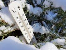 Straatthermometer met een temperatuur van Celsius en Fahrenheit in de sneeuw naast een jonge pijnboom royalty-vrije stock foto's