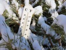 Straatthermometer met een temperatuur van Celsius en Fahrenheit in de sneeuw naast een jonge pijnboom royalty-vrije stock foto