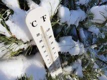 Straatthermometer met een temperatuur van Celsius en Fahrenheit in de sneeuw naast een jonge pijnboom royalty-vrije stock fotografie