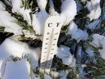 Straatthermometer met een temperatuur van Celsius en Fahrenheit in de sneeuw naast een jonge pijnboom stock afbeelding