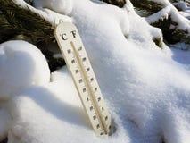 Straatthermometer met een temperatuur van Celsius en Fahrenheit in de sneeuw naast een jonge pijnboom stock foto