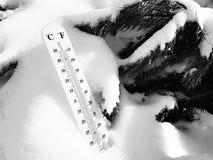 Straatthermometer met een temperatuur van Celsius en Fahrenheit in de sneeuw naast een jonge pijnboom royalty-vrije stock afbeelding