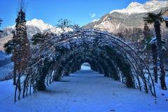 Straattuin in de sneeuw Stock Foto's