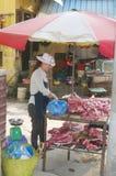 Straatventer in Hanoi royalty-vrije stock foto's