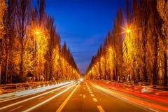 Straatweg in avond Royalty-vrije Stock Afbeelding
