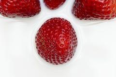 Strawberries. Beautiful strawberries isolates on white royalty free stock image