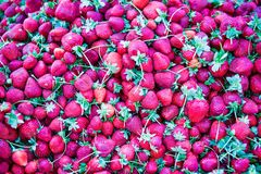 Straberries e foglie verdi rossi Fotografie Stock Libere da Diritti