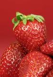 Straberries su colore rosso Immagine Stock