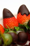 Straberry fruit with chocolate topping Royalty Free Stock Image