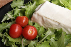 Stracchino with lettuce and tomatoes stock images