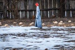 Strach na wróble w ogródu i ostatniego roku żniwie obrazy stock