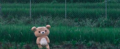 Strach na wróble niedźwiedź Obraz Royalty Free
