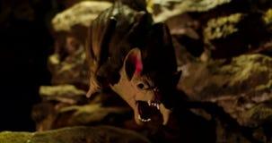 Strach na wróble nietoperz w piwnicie zbiory wideo