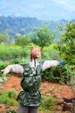 Strach na wróble W Jarzynowym ogródzie W Sri Lanka Obrazy Stock