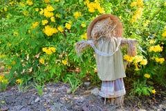 Strach na wróble w kwiatu ogródzie obrazy royalty free