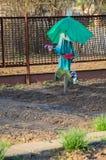 Strach na wróble w ogródzie Zdjęcia Royalty Free