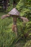 Strach na wróble w ryżowym polu dla strachu ptaki obraz stock