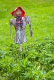 Strach na wróble w zieleni polu zdjęcia royalty free